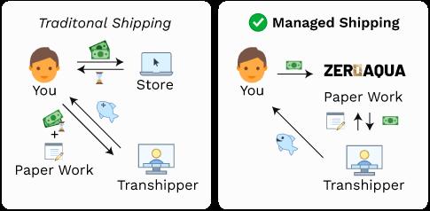 Fully Managed International Shipping